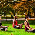 A small group of people doing yoga in the park in Fall.