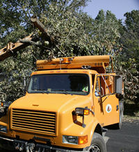 Henrico County Dump >> Free curbside pickup of storm debris through Aug. 26 - County of Henrico, Virginia
